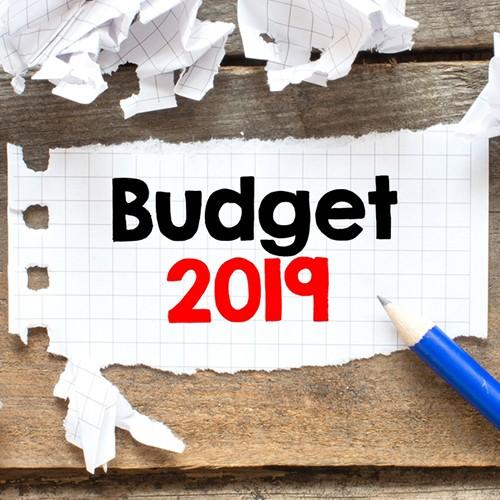 namzya-agency-naming-on-the-2019-branding-budget